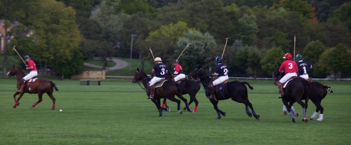 second to last Sunday of Polo for the season
