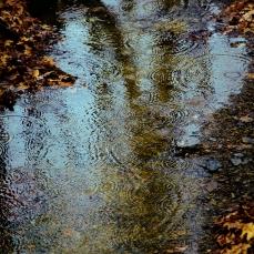 creek drops