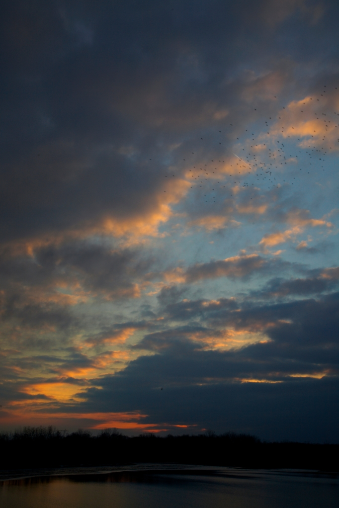 sunset 22213