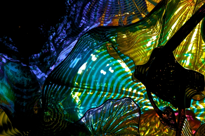 glass by Chihuly