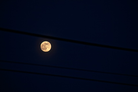 goodnight super moon