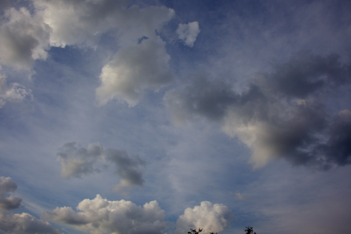 soft friendly cumulus clouds and their friends the cirrus