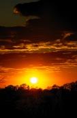 Orange Sun Kissed