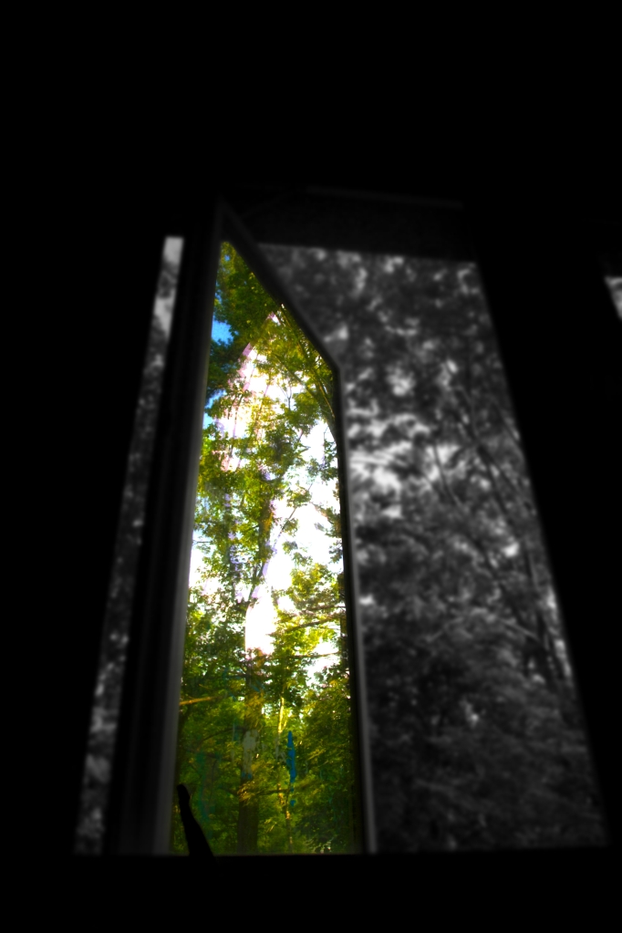 looking out my window