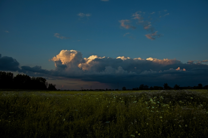 cumulus evening
