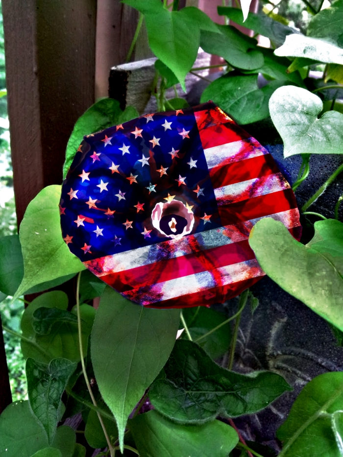 Old GLory Flower